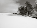 wpid17-winter-2-of-1.jpg