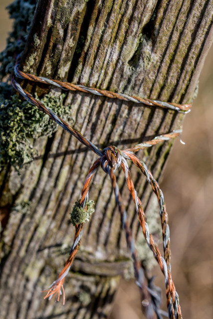 Post and Twine